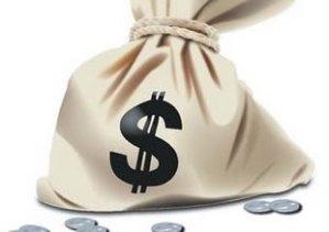 bolsa-de-dinero-web